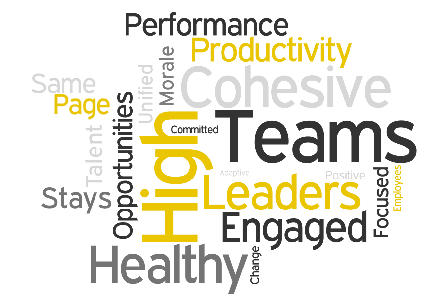 Organisational Health LeadershipWorks Healthy Organization